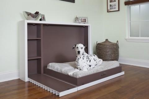 murphy_dog_bed
